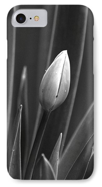 Tulip Blossom Bw IPhone Case