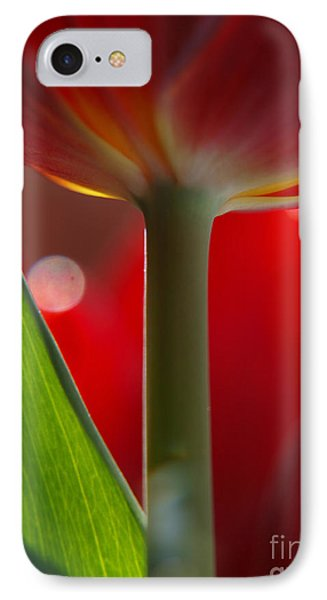Tulip Bokeh IPhone Case