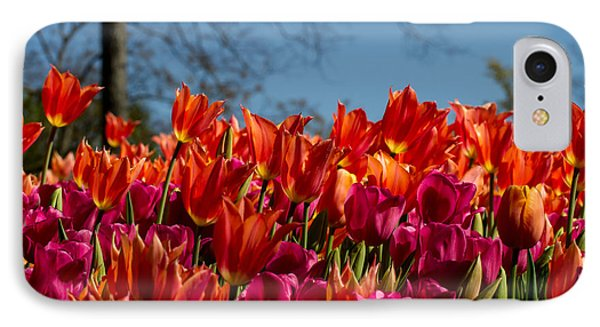 Tulip Chatter IPhone Case