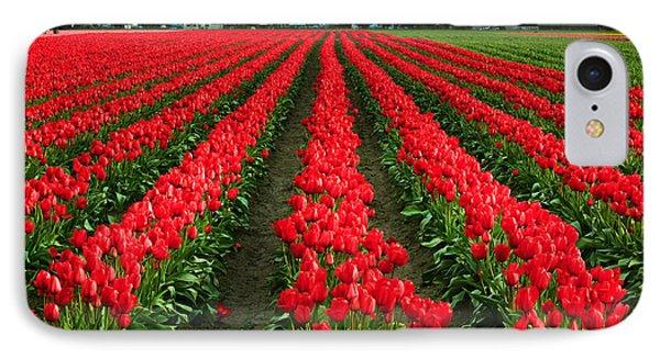 Tulip Cornucopia Phone Case by Inge Johnsson