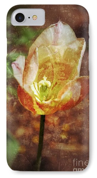 IPhone Case featuring the photograph Tulip by Darla Wood