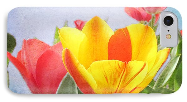 Tulip Joy IPhone Case by Deborah Smith