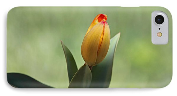 IPhone Case featuring the photograph New Beginning by Lisa L Silva