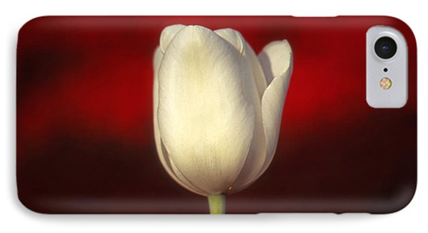 Tulip IPhone Case by Marion Johnson