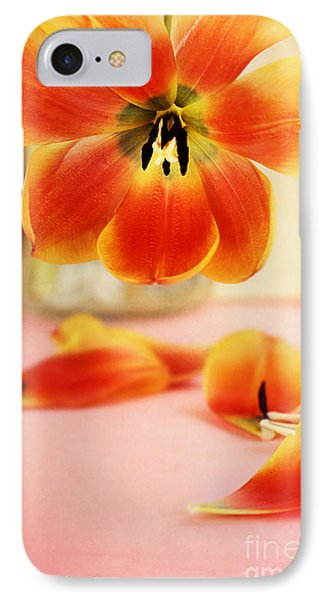 Tulip Petals IPhone Case by Stephanie Frey