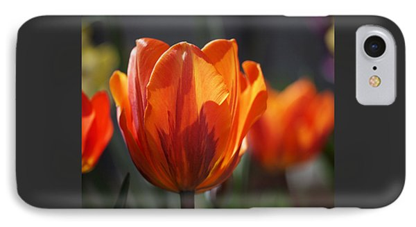 Tulip Prinses Irene Phone Case by Rona Black