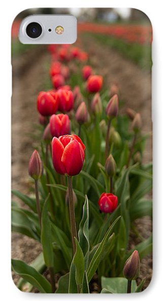 IPhone Case featuring the photograph Tulip Row by Erin Kohlenberg