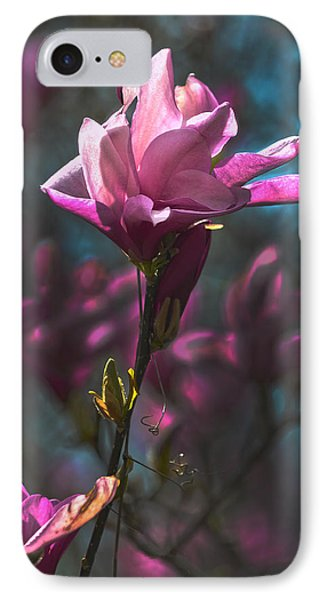 Tulip Tree Blossom Phone Case by Sandi OReilly