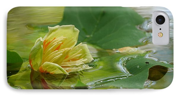 Tulip Tree Flower IPhone Case by Jane Ford