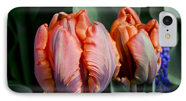 Irene Parrot Tulips IPhone Case