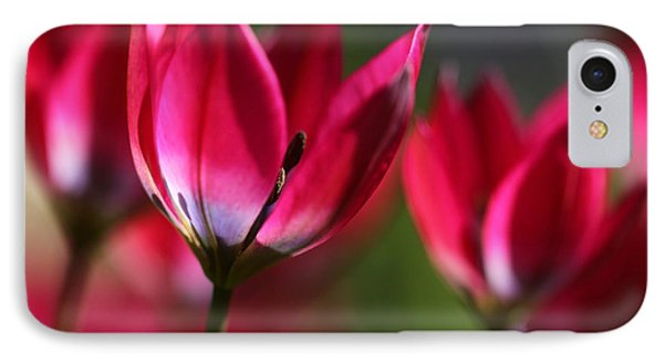 IPhone Case featuring the photograph Tulips by Annie Snel