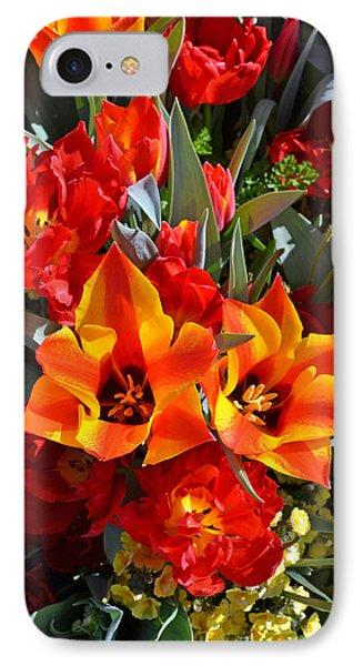 Tulips At The Pier IPhone Case