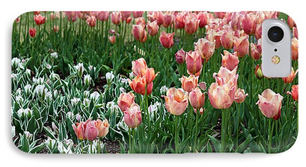 Tulips Galore  Phone Case by Suzanne Gaff