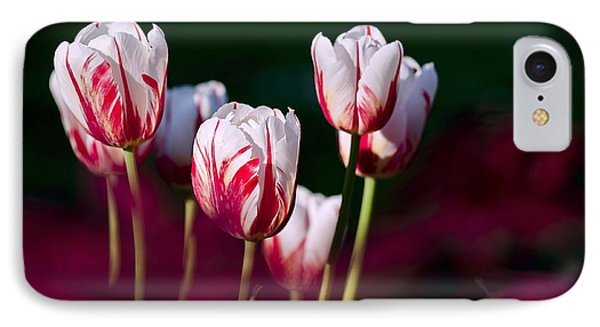 IPhone Case featuring the photograph Tulips Garden Flowers Color Spring Nature by Paul Fearn