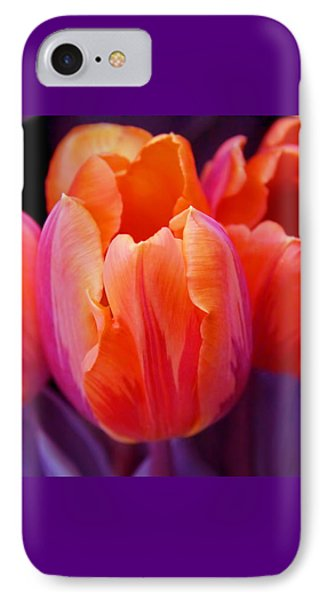 Tulips In Orange And Purple IPhone Case