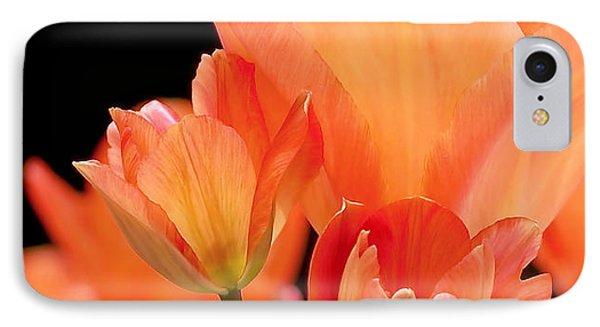 Tulips In Shades Of Orange IPhone 7 Case