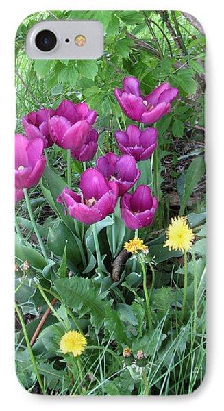 Tulips In Summer IPhone Case