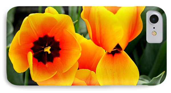 Tulips... IPhone Case by Jerry Cahill