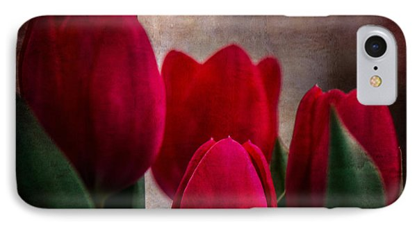 Tulips IPhone Case by Judy Wolinsky