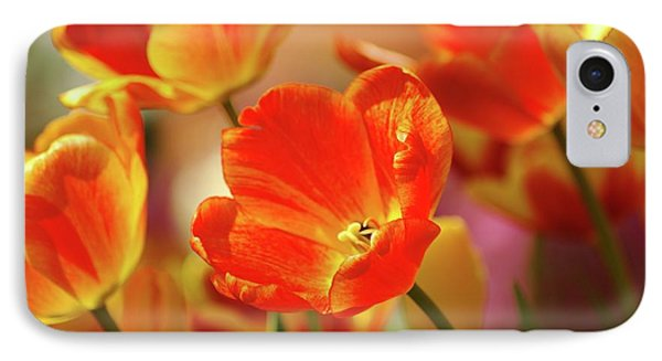 Tulips Phone Case by Kathleen Struckle