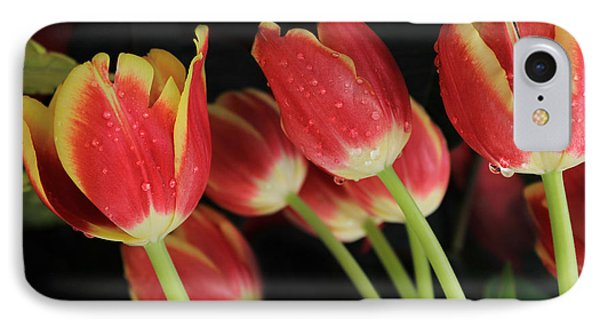 Tulips IPhone Case by Kristine Merc