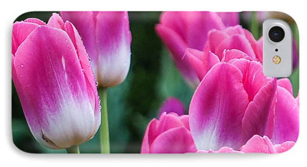 Tulips IPhone Case by Sergey Simanovsky