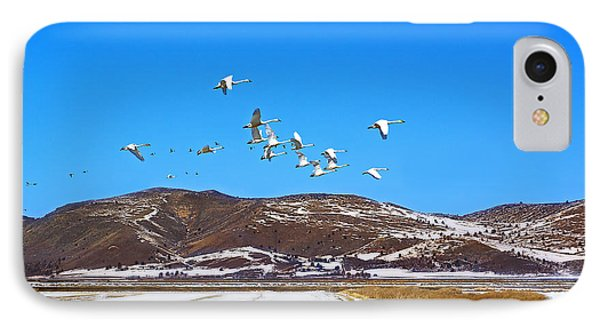 Tundra Swans Take Flight  IPhone Case