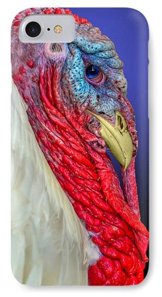 Turkey 2 IPhone Case by Brian Stevens