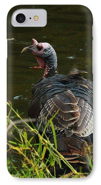 Turkey At Lake IPhone Case by Jeff Kurtz