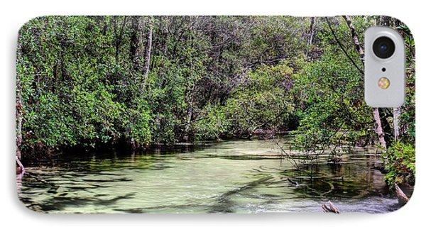 Turkey Creek Niceville IPhone Case