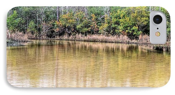 Turkey Hen Creek Pano IPhone Case