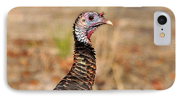 Turkey Profile IPhone Case by Al Powell Photography USA