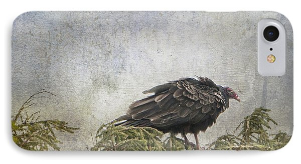 Turkey Vulture Looking For Dinner IPhone Case by Betty  Pauwels