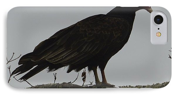 Turkey Vulture Phone Case by Randy Bodkins