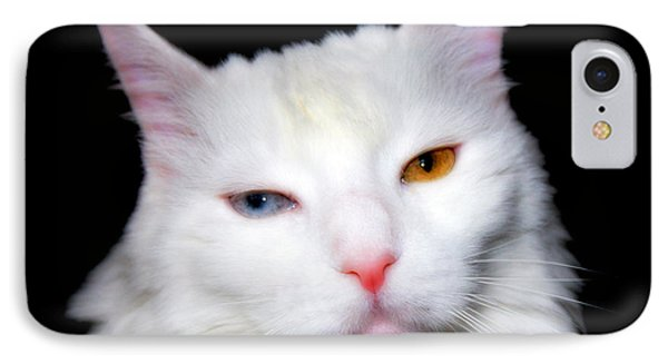 IPhone Case featuring the photograph Turkish Angora by Aurelio Zucco