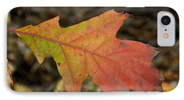 Turn A Leaf IPhone Case by JAMART Photography