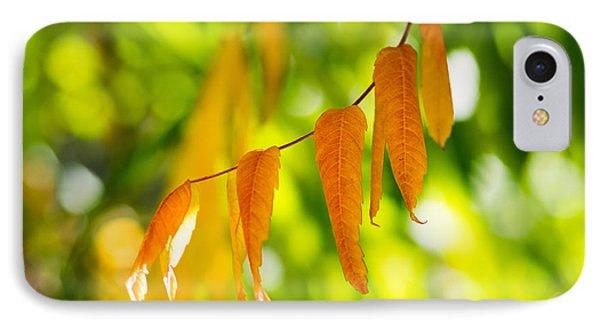 Turning Autumn IPhone Case by Aaron Aldrich