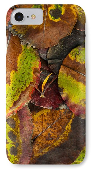 Turning Leaves 4 Phone Case by Stephen Anderson