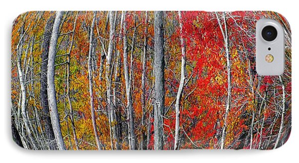 Turning Leaves Phone Case by Scott Cameron
