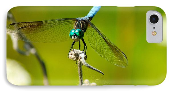 Turquoise Dragonfly Phone Case by Lorri Crossno