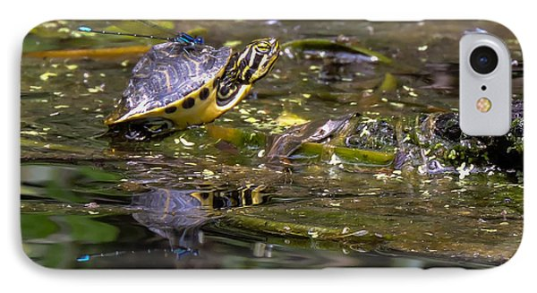 Turtle And His Friend IPhone Case