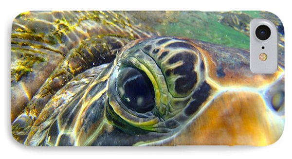 Turtle Eye IPhone Case by Carey Chen
