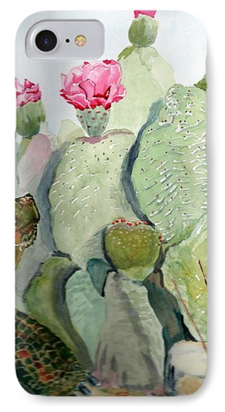 Turtle Gazing Upon Dessert Phone Case by Joann Perry