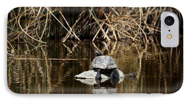 Turtle On Turtle IPhone Case
