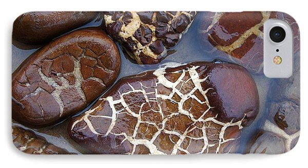 Turtle Or Stone IPhone Case by Kathi Mirto