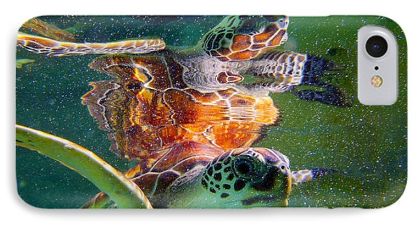 Turtle Reflection IPhone Case by Carey Chen