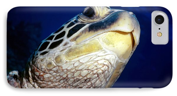 Turtles 1 Phone Case by Dawn Eshelman