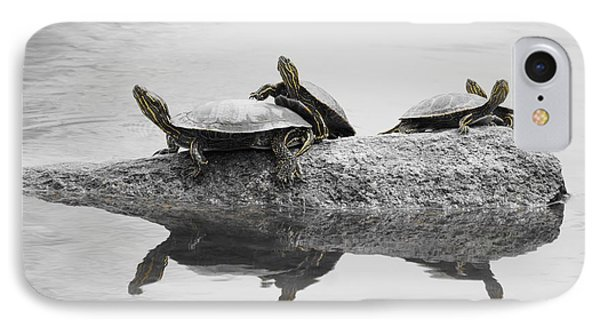 Turtles IPhone Case by Steven Clipperton