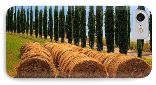 Tuscan Hay IPhone Case by Inge Johnsson