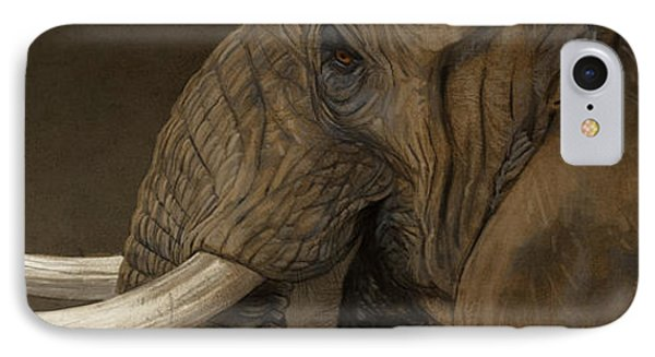 Tusker IPhone Case by Aaron Blaise